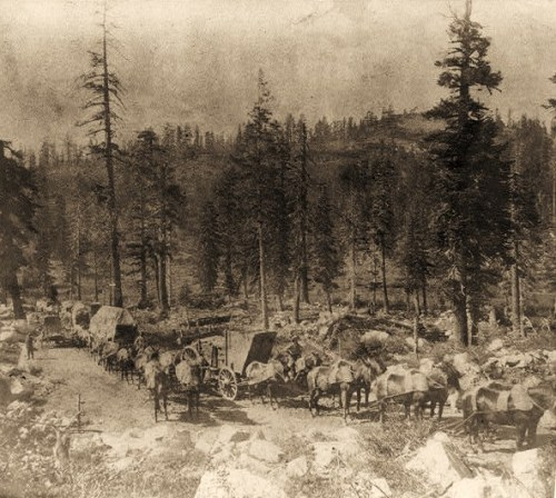 Teams on the Summit, Dutch Flat and Donner Lake Wagon Road, Placer County