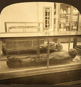 Mummies (30 to 40 centuries old) in the museum, Gizeh, Egypt