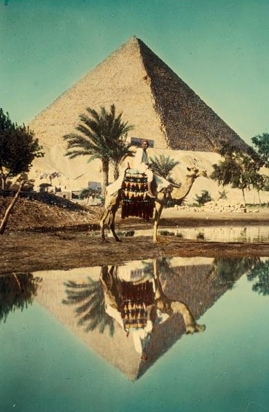 Egypt. Pyramids. Pyramid & camel  rider reflected in Nile overflow