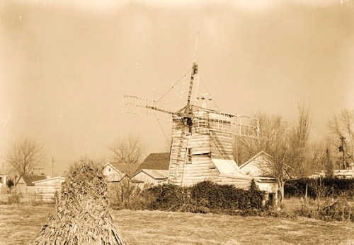 Historic American Buildings Survey E. H. Pickering, Photographer December 1936 WINDMILL - Federalsburg Windmill, Oak Grove Raod, Federalsburg, Caroline County, MD