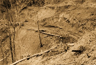 Army bulldozers constructing the Ledo Road cut a path through a hillside in the Indian jungle. (Department of the Army photograph)