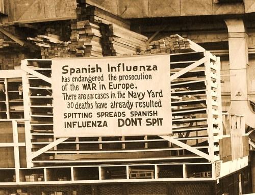 flu004