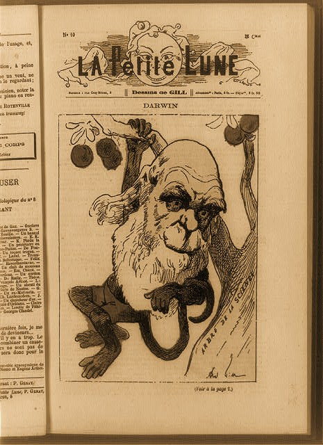Caricature showing English naturalist Charles Darwin as a monkey hanging from tree of Science. A response to the 1871 publication of his book The descent of man.